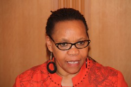 ペコ駐日南アフリカ大使